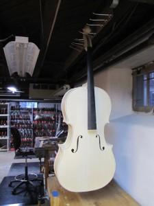 String Instrument Store in Philadelphia