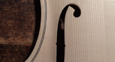Guarneri Del Gesu F-holes